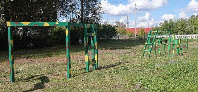 Реализация проекта «Военно-спортивная полоса препятствий на школьной территории»