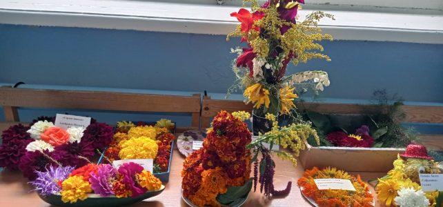 Конкурс «Цветочный марафон